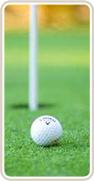 Ялтинская ассоциация гольфа